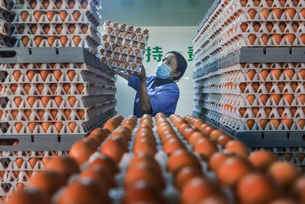عودة الوفيات إلى الصين... وحالة «طوارئ» في مدينة حدودية