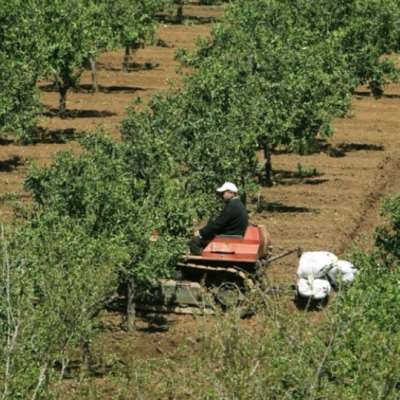 مبادرات زراعية فوق سدّ بسري... قبل أن يغيّر «البيك»   رأيه!