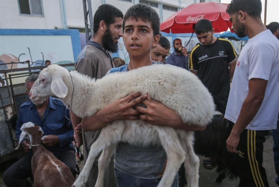 خلافات في الشكل والمضمون: نحو إلغاء مهرجان غزّة؟