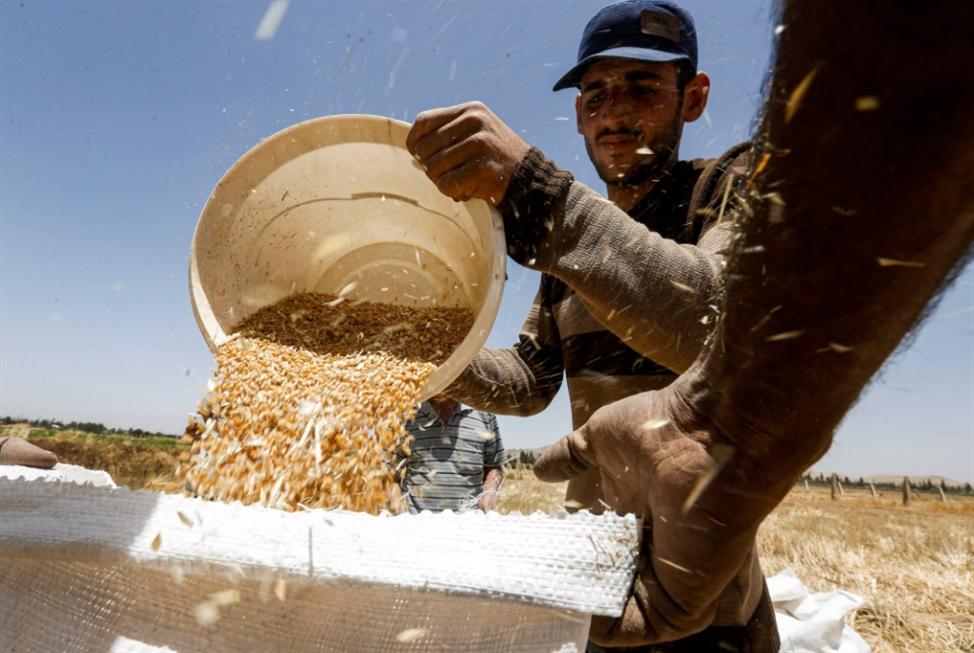 في مواجهة الحصار: فتّش عن الدعم    الزراعي والصناعي