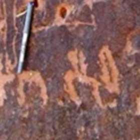 حول الحصان المزعوم للملك البابليّ نبونيد