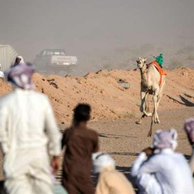 السعودية والإمارات تستنفران: بداية تفاهم تركي - مصري