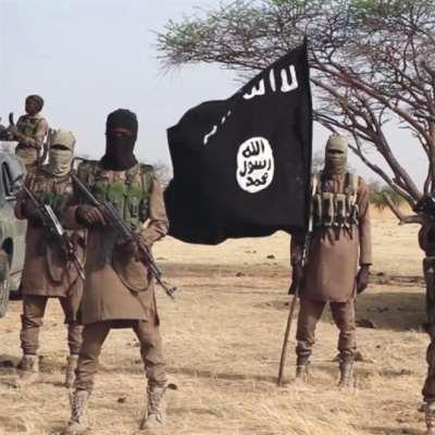 «الدولة الإسلامية ــ ولاية غرب أفريقيا» يتبنّى قتل 30 جندياً نيجيرياً