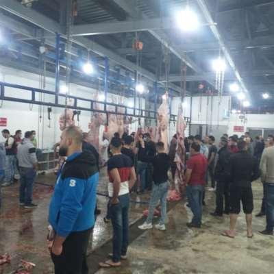 اللحم المدعوم في مسلخ صور البلدي: الكمية غير كافية
