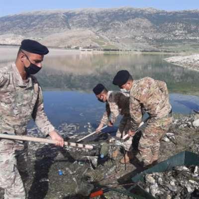الجيش في القرعون... وهكذا تميّزون سمكة الكارب النافقة