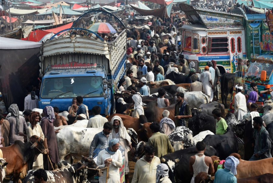 مقتل 30 في تصادم حافلة مع شاحنة في باكستان