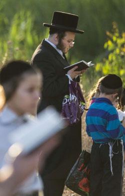 المفارقة الكبرى هي أن هدف الصهيونية تحويل الدين اليهودي الى «قومية» يهودية أرضها «إسرائيل» (أ ف ب)