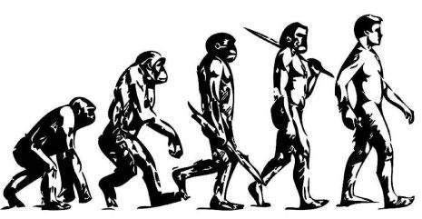 إن نظرية التطور لا تقول إن جد الإنسان الأكبر كان قرداً بل تشير إلى أن للقرود وللبشر سلف مشترك