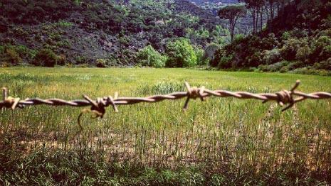 المشروع يغطي نحو 570 هكتاراً من الأراضي الزراعية والطبيعية («جمعية الأرض ـ لبنان»)