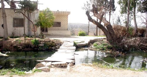 جسر خشبي يفصل بين لبنان وسوريا في بلدة حوش السيد علي (الأخبار)
