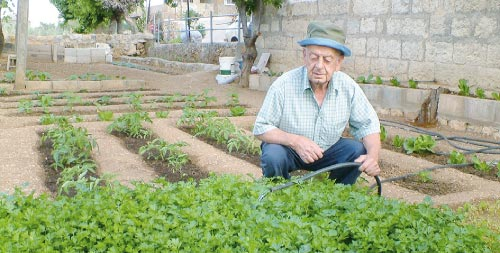 أبو جهاد في حديقته صباحاً ومساءً (الأخبار)