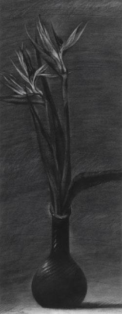 «عصافير الجنة» (فحم على ورق ـــ 100 × 40 سنتم ــ 2009)