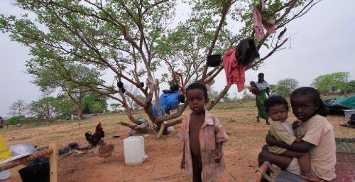 أطفال في مدينة كادوقلي في جنوب كردفان (محمد نور الدين عبد الله - رويترز)