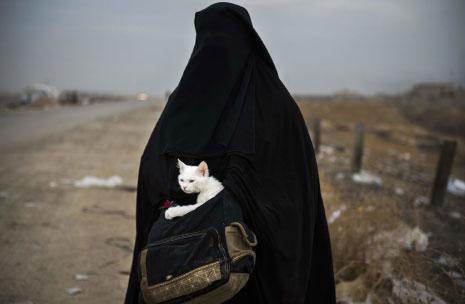 حملت هذه العراقية قطّتها «لولو» وهربت من المعارك الدائرة في الموصل لتحريرها من «داعش». (أود أندرسون ــ أ ف ب)