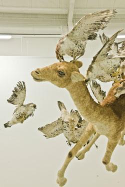 تجهيز «Flying Together» (2011) للفنان الصيني ساي جوو تشانغ